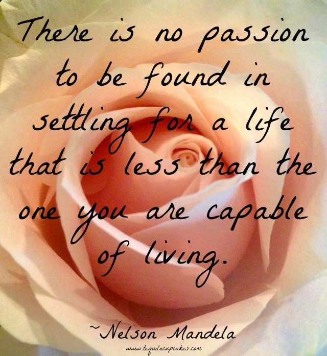 there is no passion to be found nelson mandela