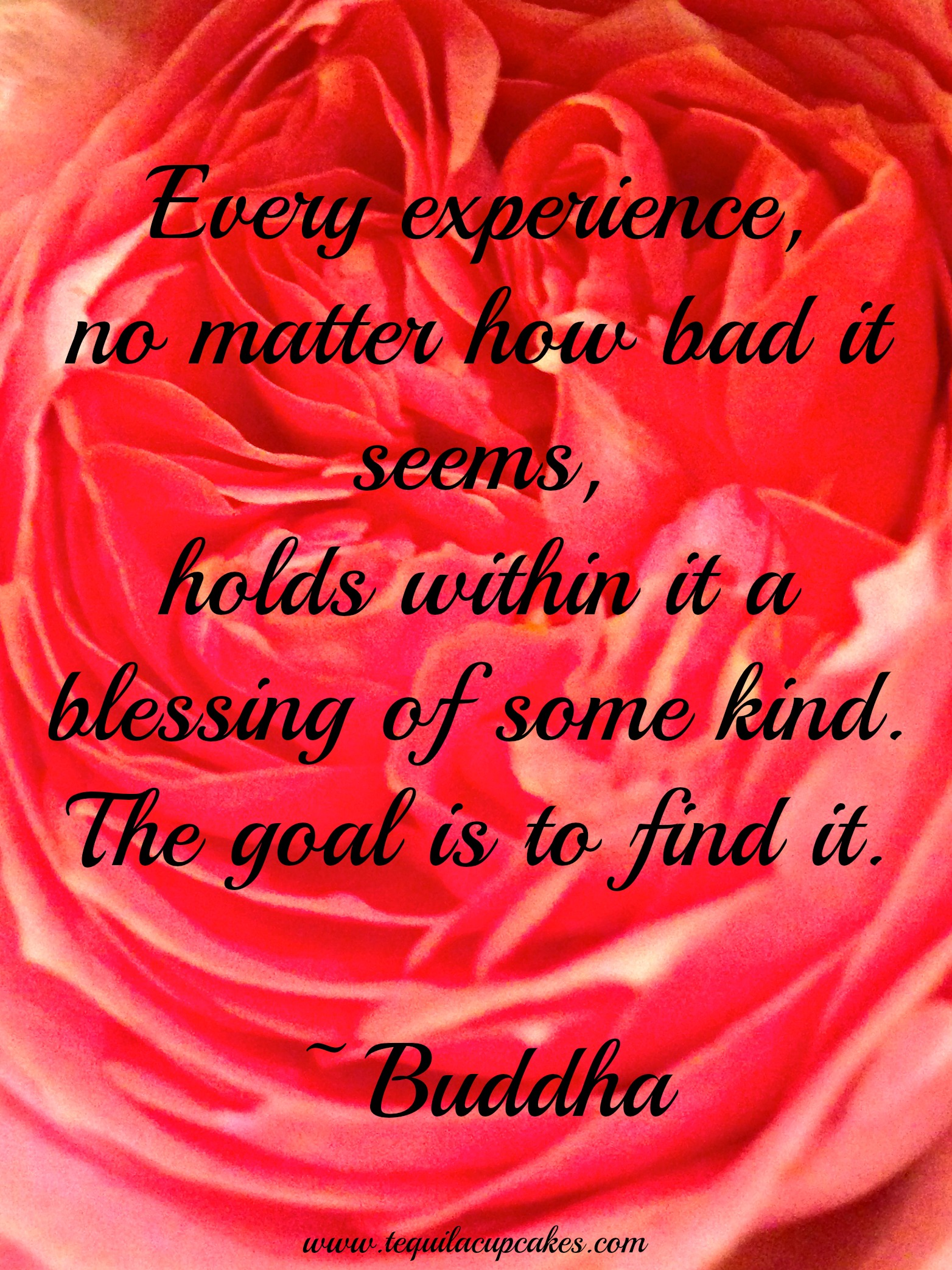 Experiences Quotes Quotes Every Experience